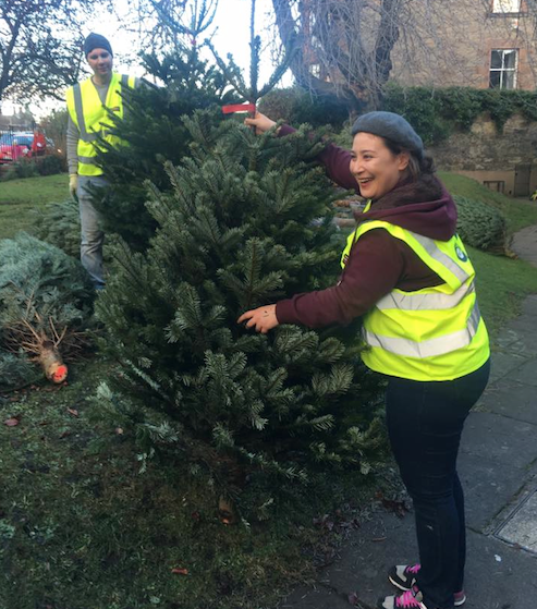 Caring Christmas Trees volunteers at St Stephen's Comely Bank Church in  Edinburgh - Charity Hails Success Of Christmas Trees Fundraiser - News - Life