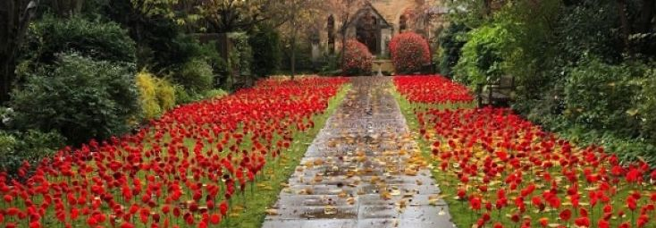 Remembrance 2019: Gallery